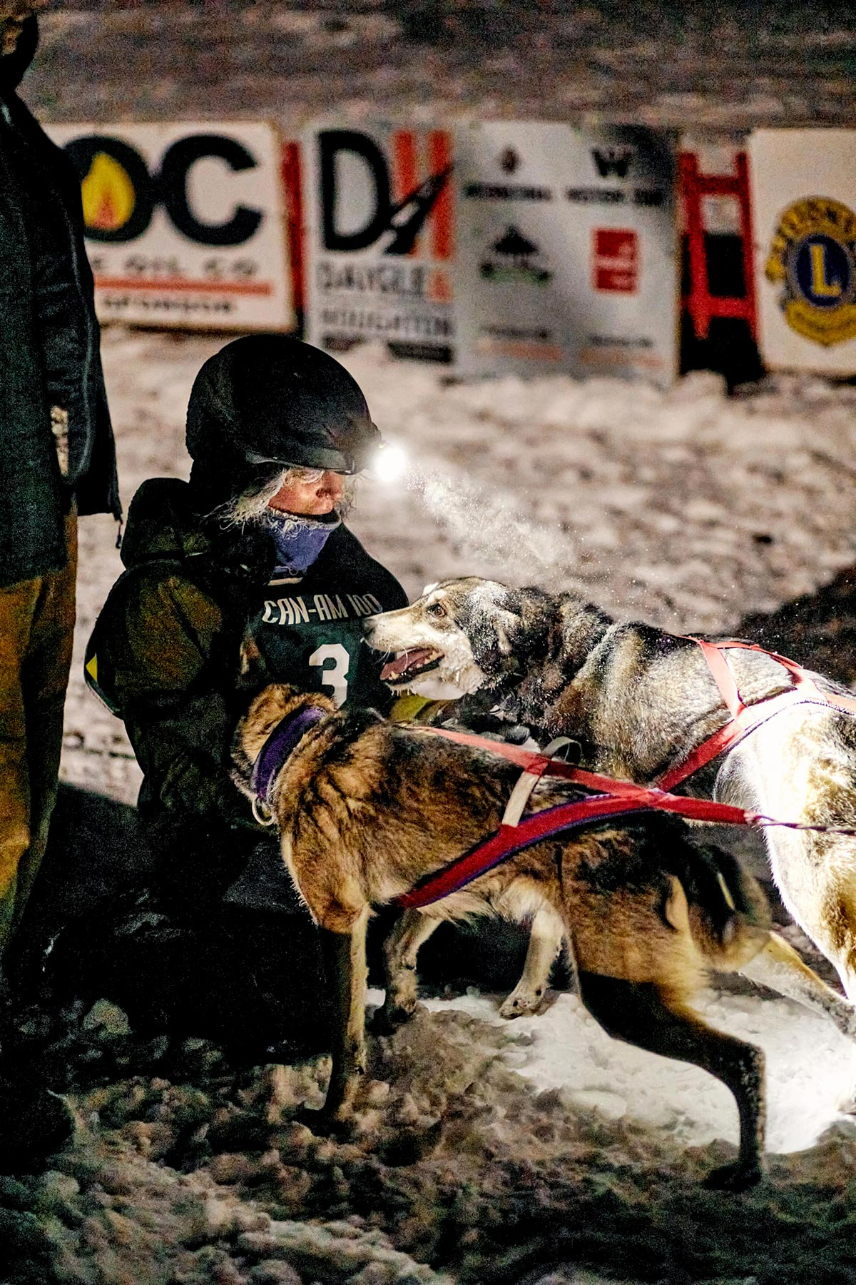 M_WilsonCan_AM-Dog-Sled00010