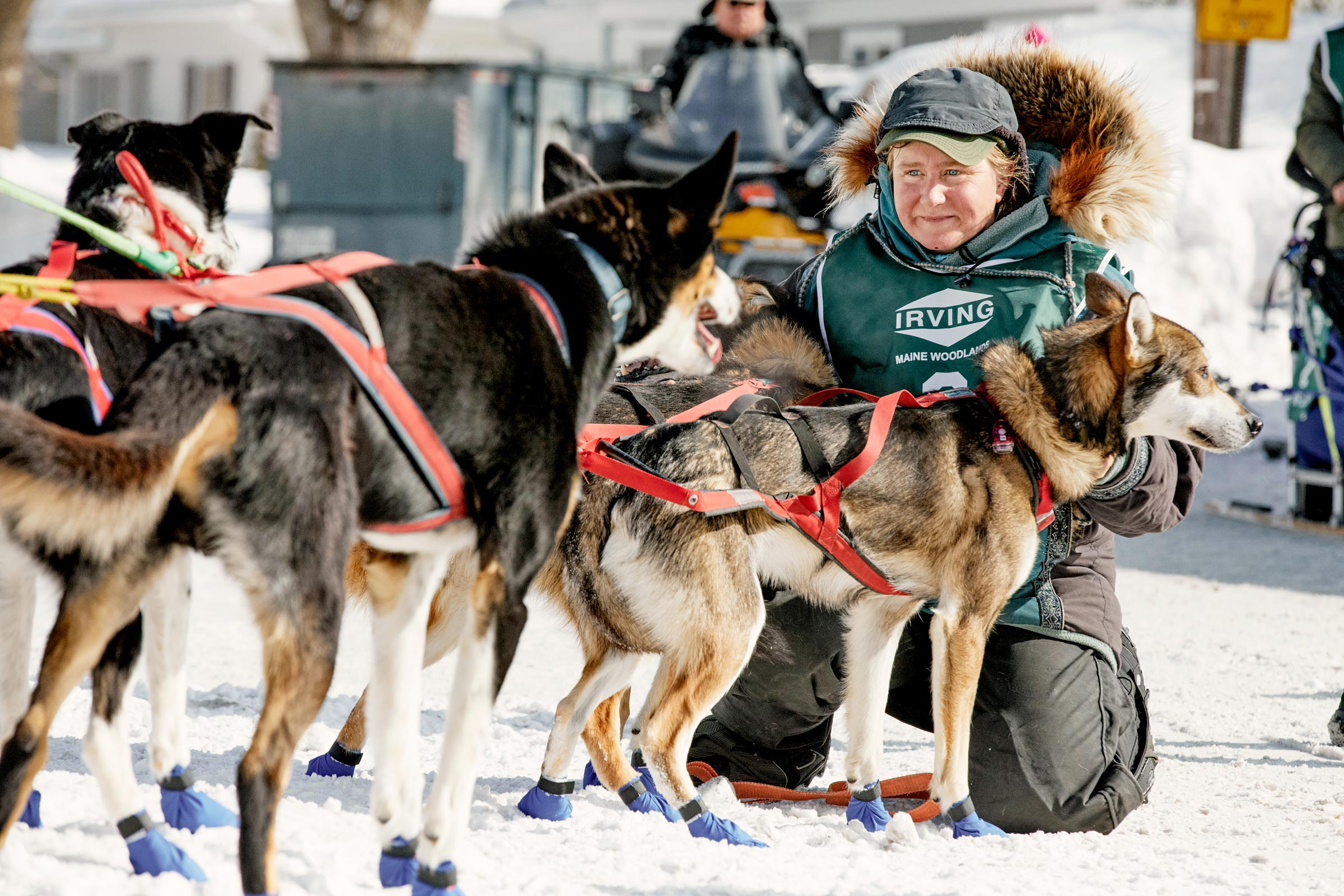 M_WilsonCan_AM-Dog-Sled00020