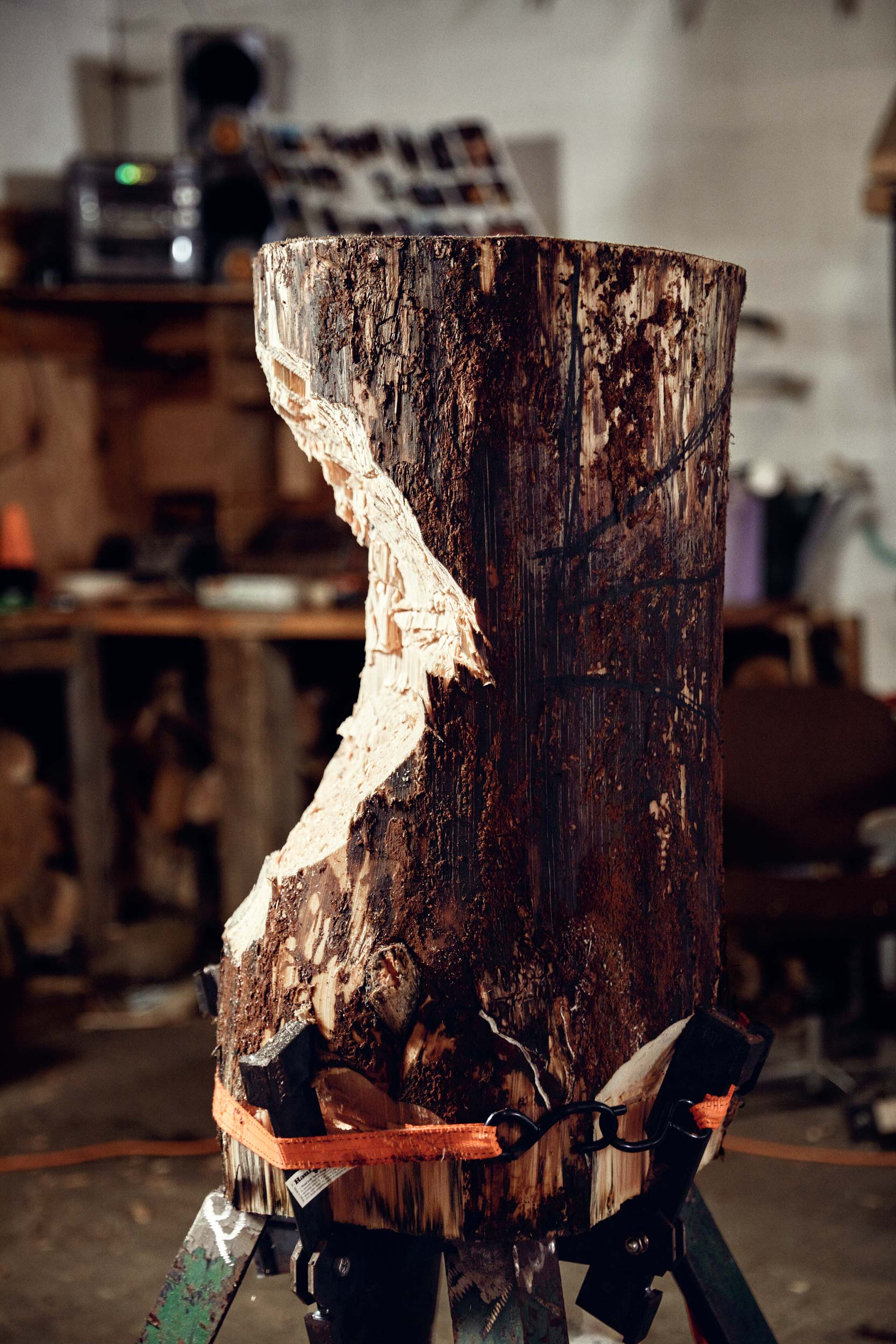 Maine-Unity-College-Woodsmen-Photos-6